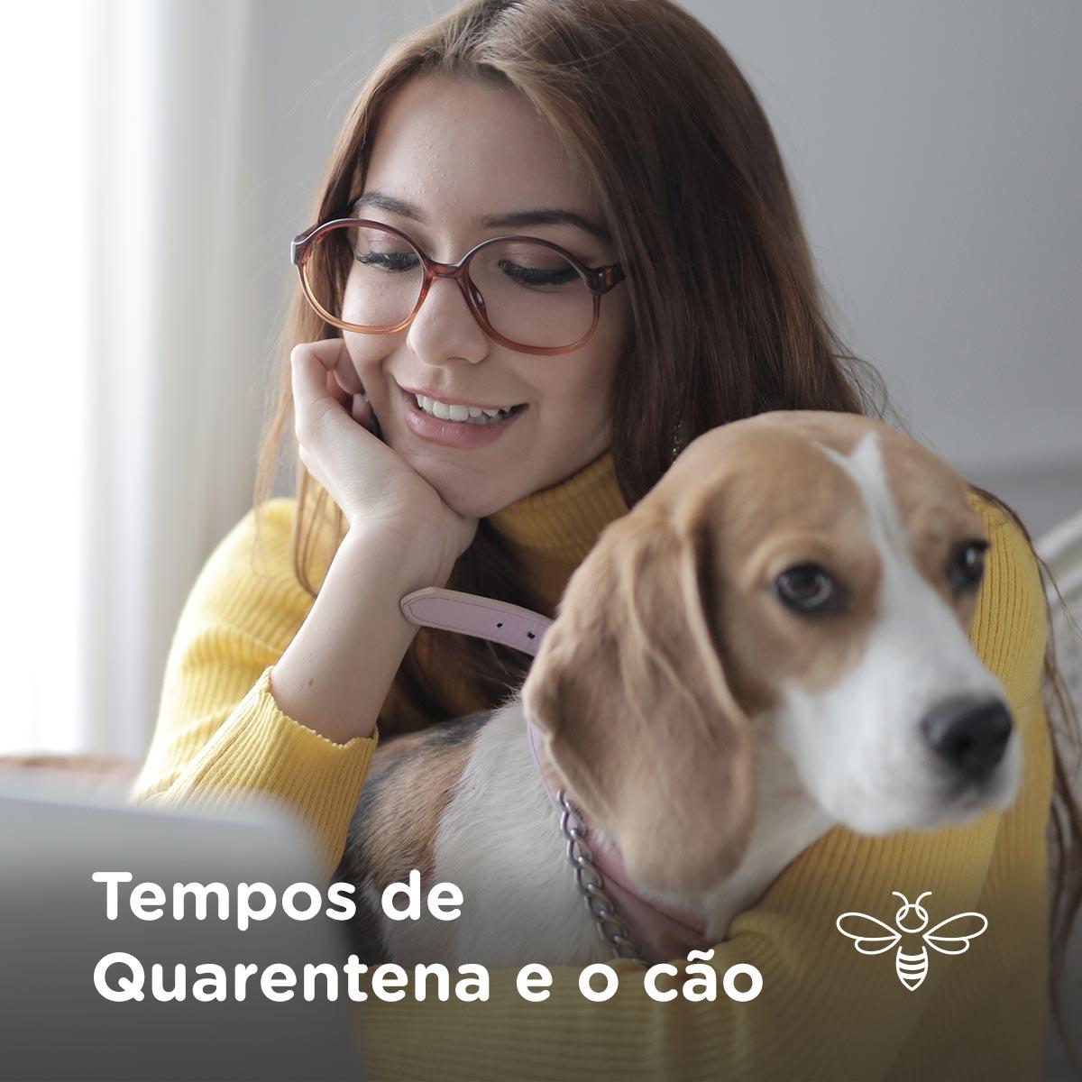 Tempos de Quarentena e o Cão