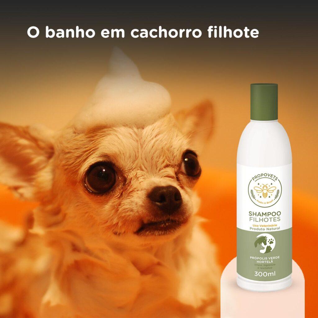 Shampoo Filhotes