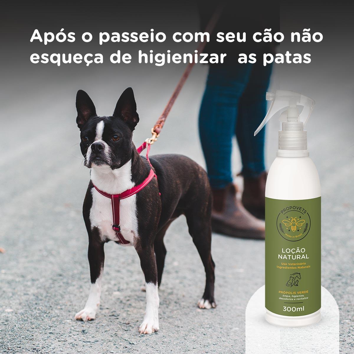 após o passeio com seu cão não esqueça de higienizar as patas