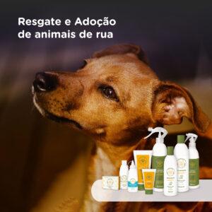 Resgate e Adoção de animais de rua