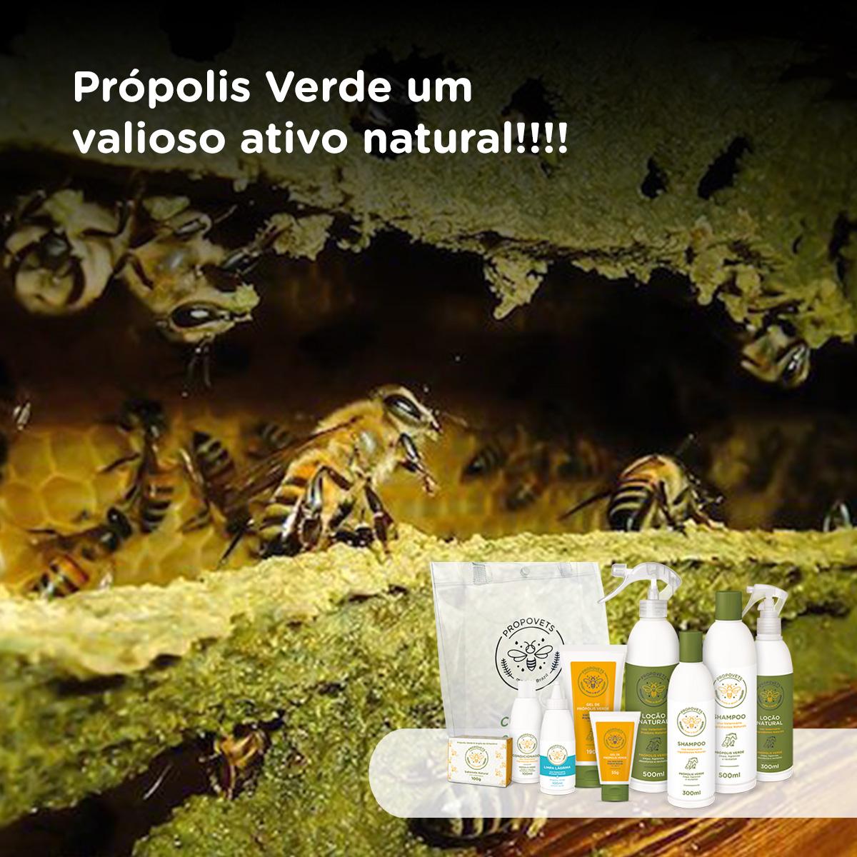 Própolis Verde um valioso ativo natural!!!