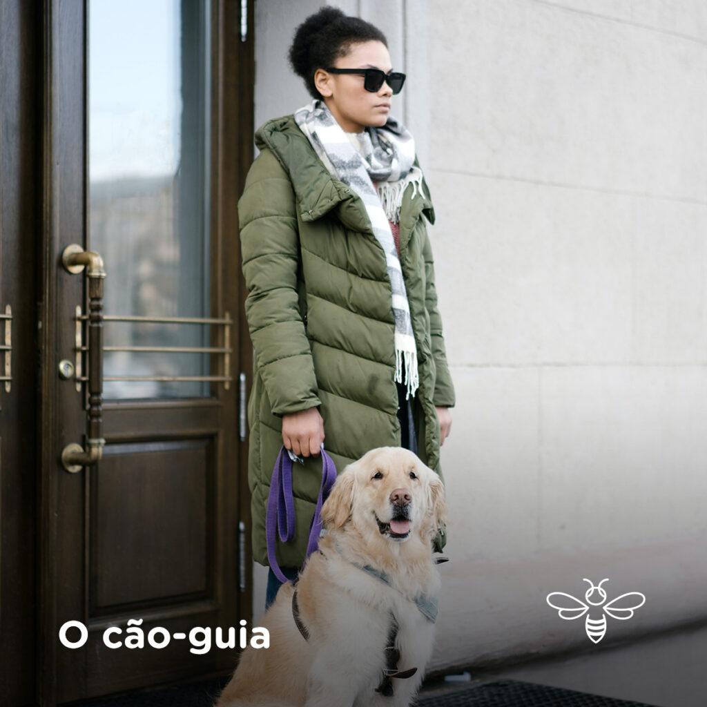 O cão-guia