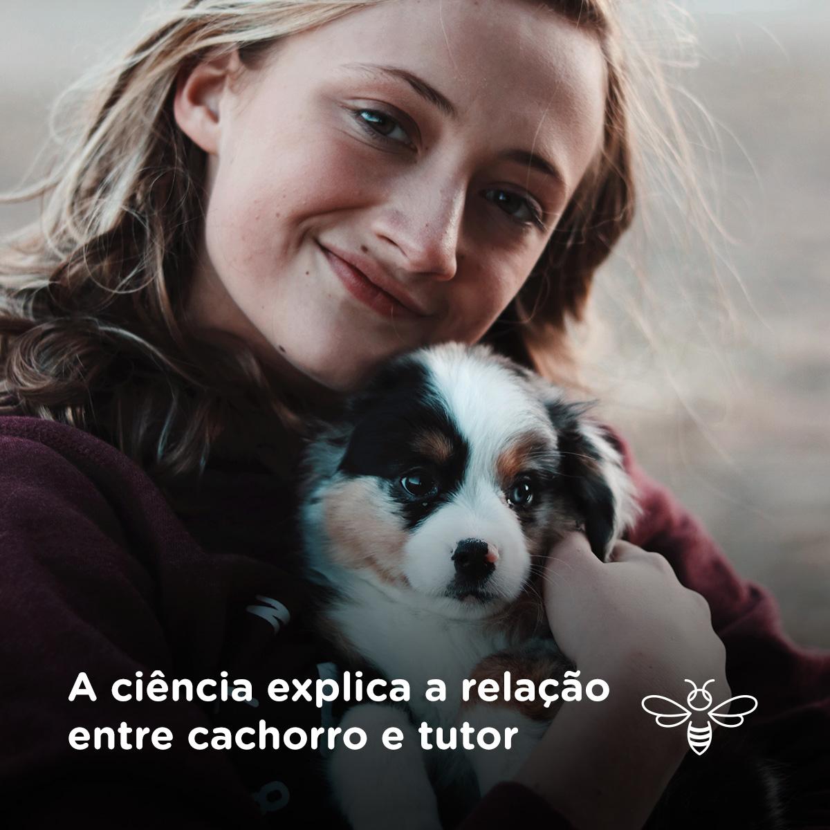 A ciência explica a relação entre cachorro e tutor